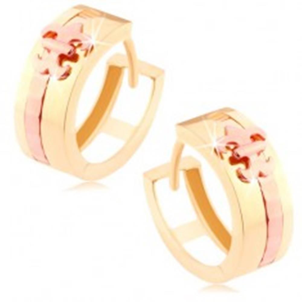 Šperky eshop Dvojfarebné zlaté náušnice 585 - lesklý krúžok, pásik a Fleur de Lis medenej farby