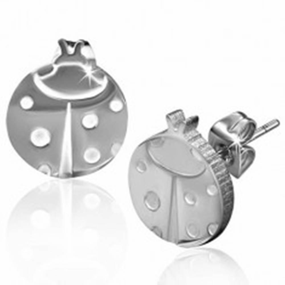 Šperky eshop Puzetové náušnice z ocele 316L, strieborný odtieň, lienka s bodkami