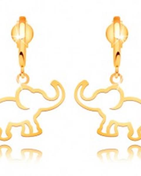 Šperky eshop Náušnice zo žltého 14K zlata - kontúra slona visiaca na lesklom oblúku