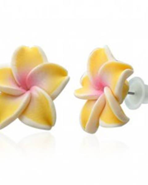 Šperky eshop Fimo náušnice - žltá Plumeria