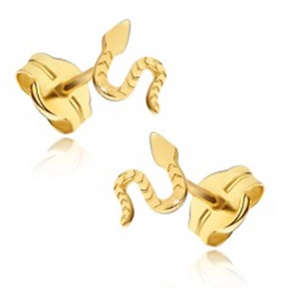 Šperky eshop Náušnice zo žltého 14K zlata - lesklý plaziaci sa had, ryhovaný povrch