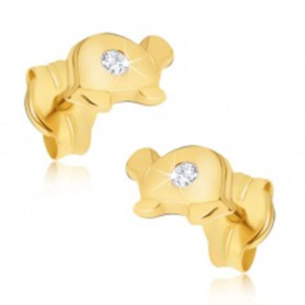 Šperky eshop Zlaté náušnice 585 - malé lesklé korytnačky s čírym kamienkom na pancieri