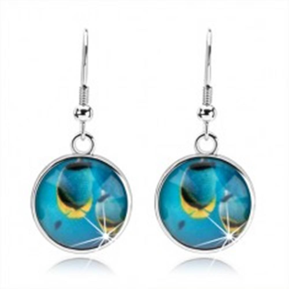 Šperky eshop Náušnice kabošon, vypuklá glazúra, modré rybky v mori