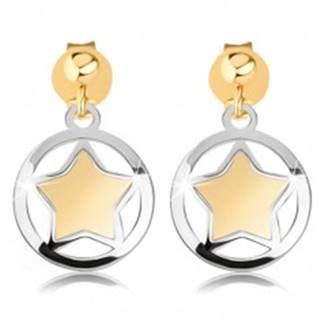 Dvojfarebné náušnice z 9K zlata - matná hviezdička v lesklom obryse kruhu
