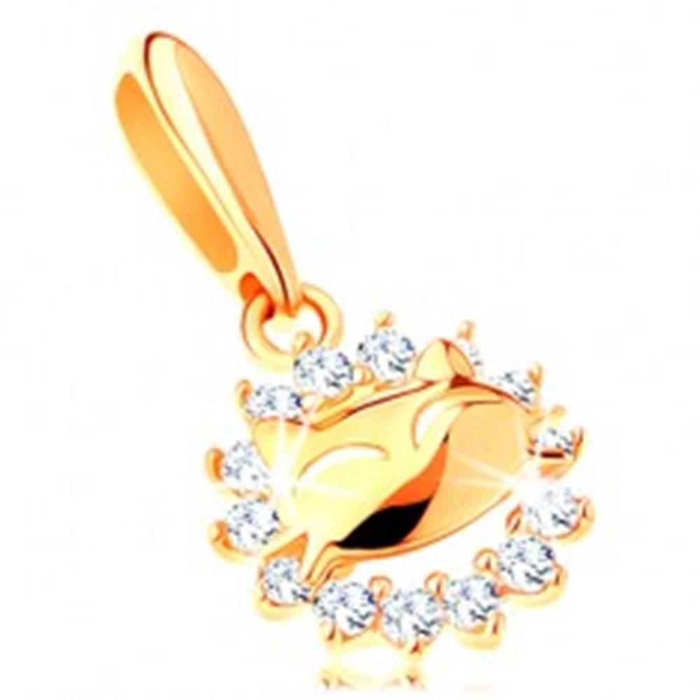 Šperky eshop Ligotavý prívesok v žltom 14K zlate - zirkónová kontúra kruhu, mačička