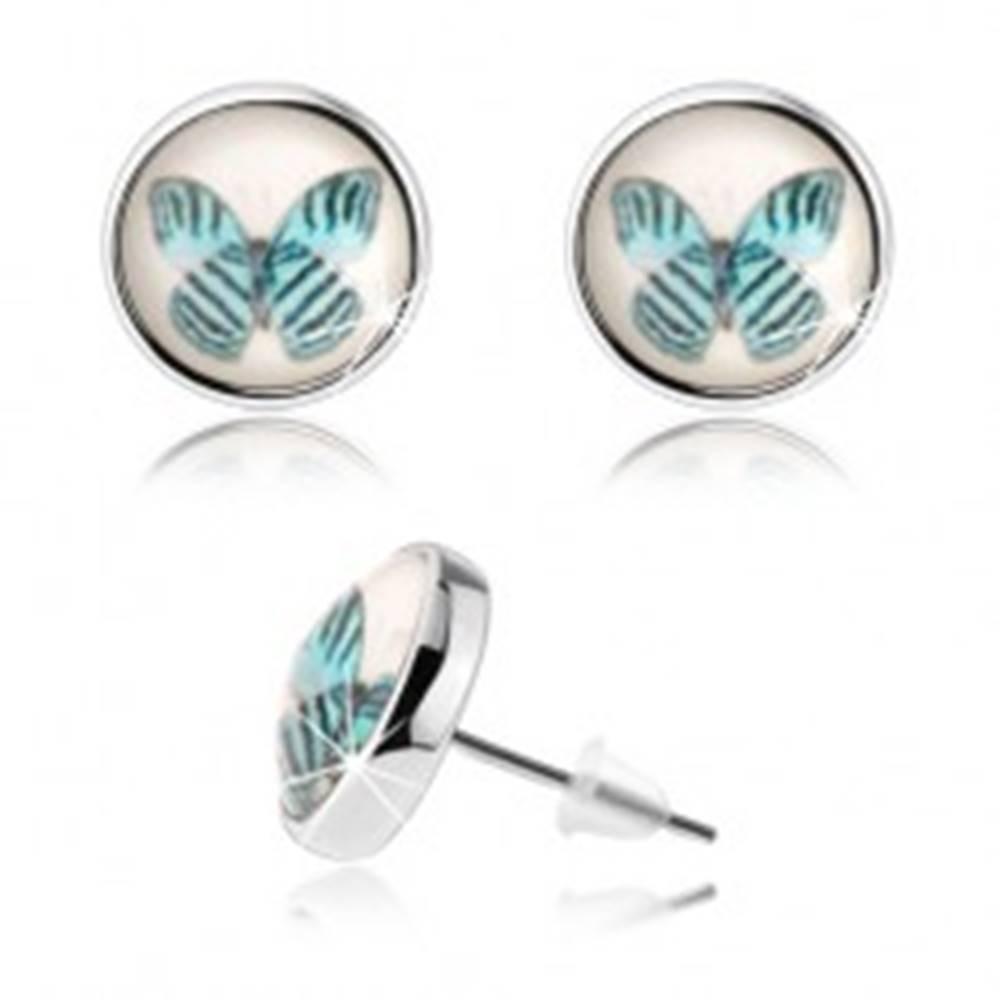 Šperky eshop Náušnice cabochon, vypuklé sklo, modrý motýľ s čiernymi pásmi, biely podklad