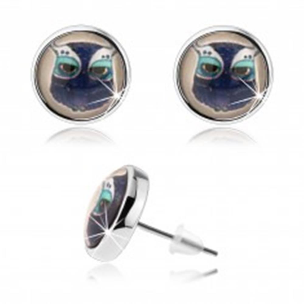 Šperky eshop Náušnice cabochon, vypuklé sklo, strieborná farba, obrázok sovy