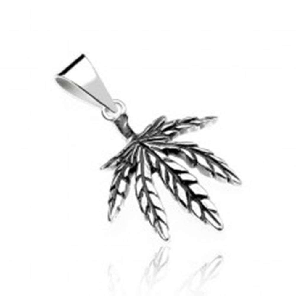 Šperky eshop Prívesok zo striebra 925 - marihuanový list, jemne patinovaný