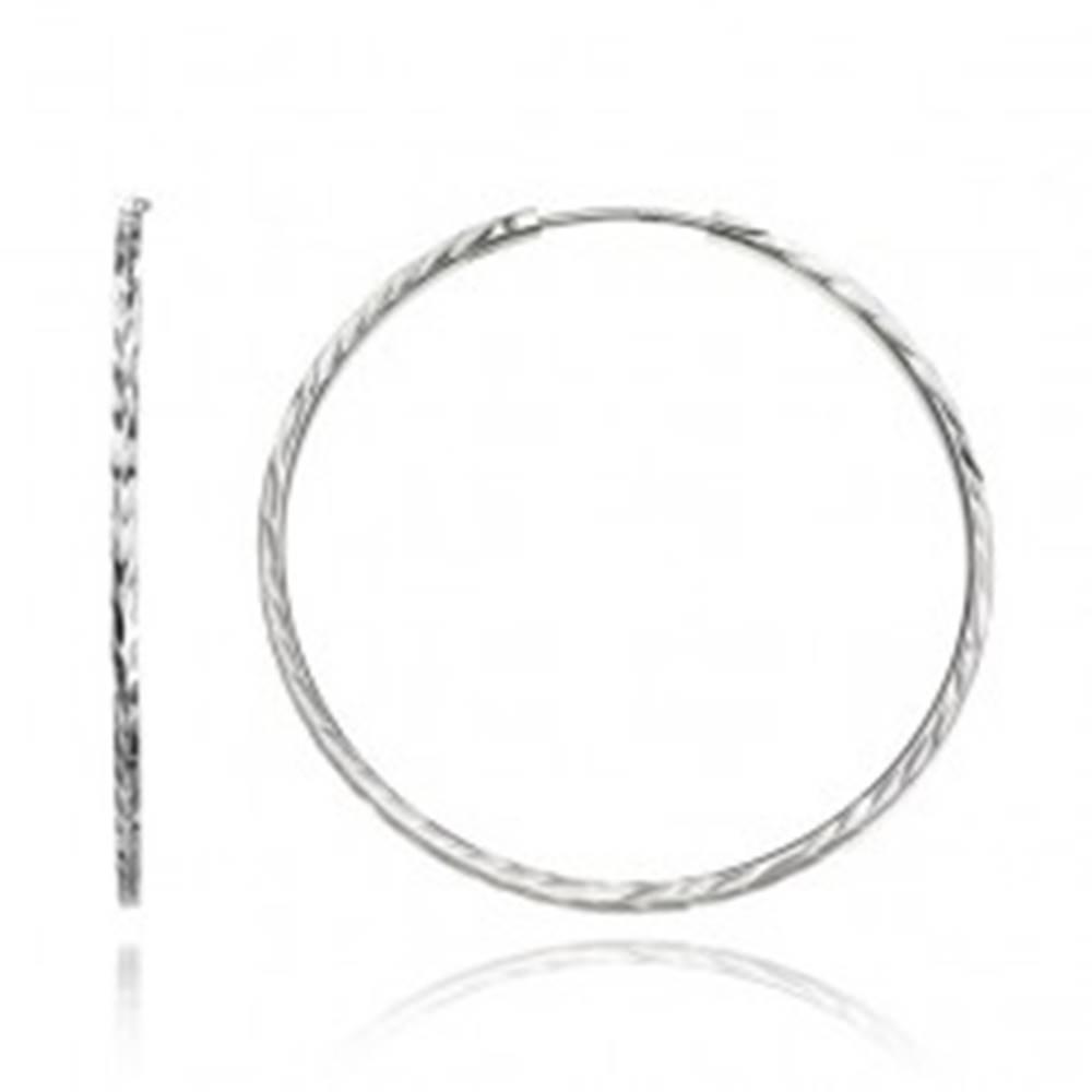 Šperky eshop Okrúhle náušnice zo striebra 925 - hranatá línia s lístkami, 40 mm