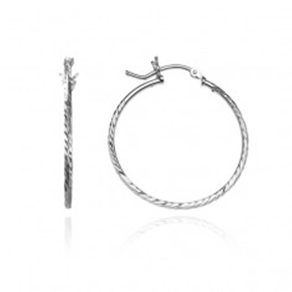 Šperky eshop Strieborné náušnice 925 - kruhy so štyrmi radmi lístkov, 30 mm