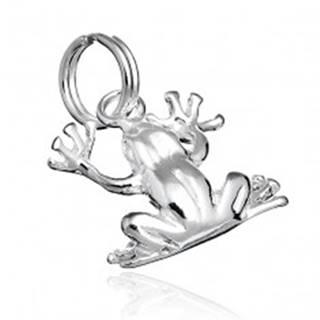 Prívesok zo striebra 925 - lesklá žaba