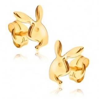 Náušnice v žltom 9K zlate - lesklá hlava zajačika