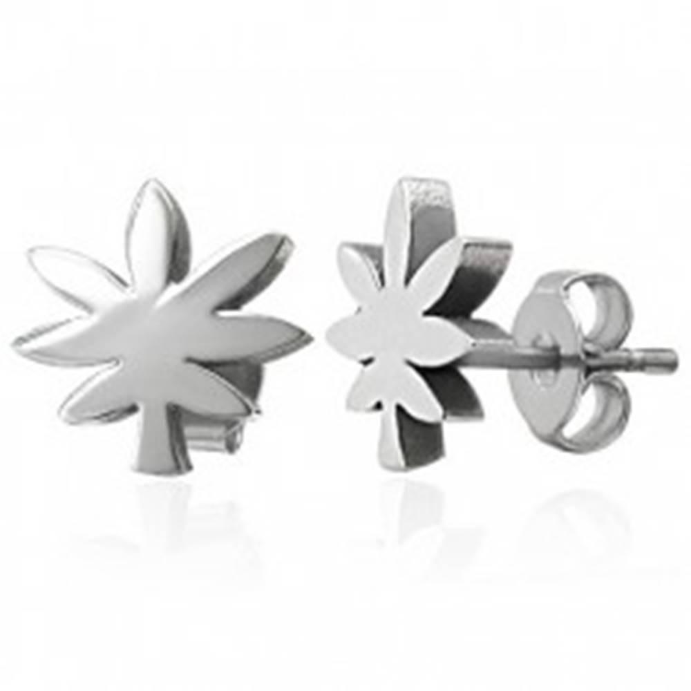 Šperky eshop Ocelové náušnice striebornej farby - list marihuany