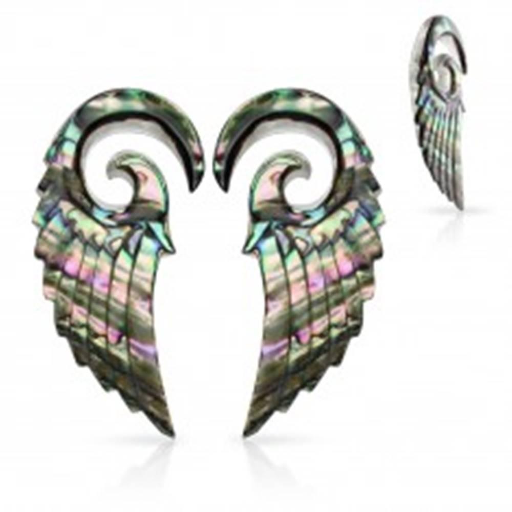 Šperky eshop Expandery z organického materiálu, špirála s anjelským krídlom, mušľa Paua - Hrúbka: 2,5 mm