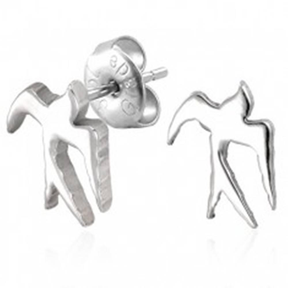 Šperky eshop Oceľové náušnice striebornej farby  - lesklá lastovička