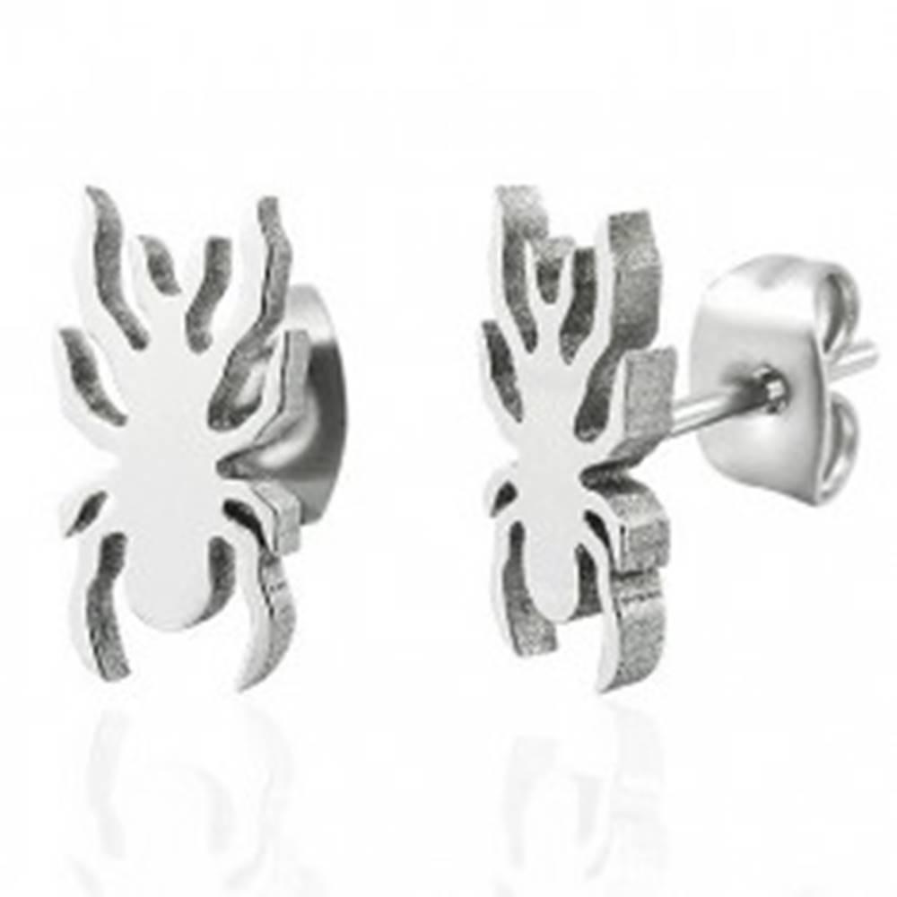Šperky eshop Oceľové náušnice v striebornom odtieni - lesklý pavúčik