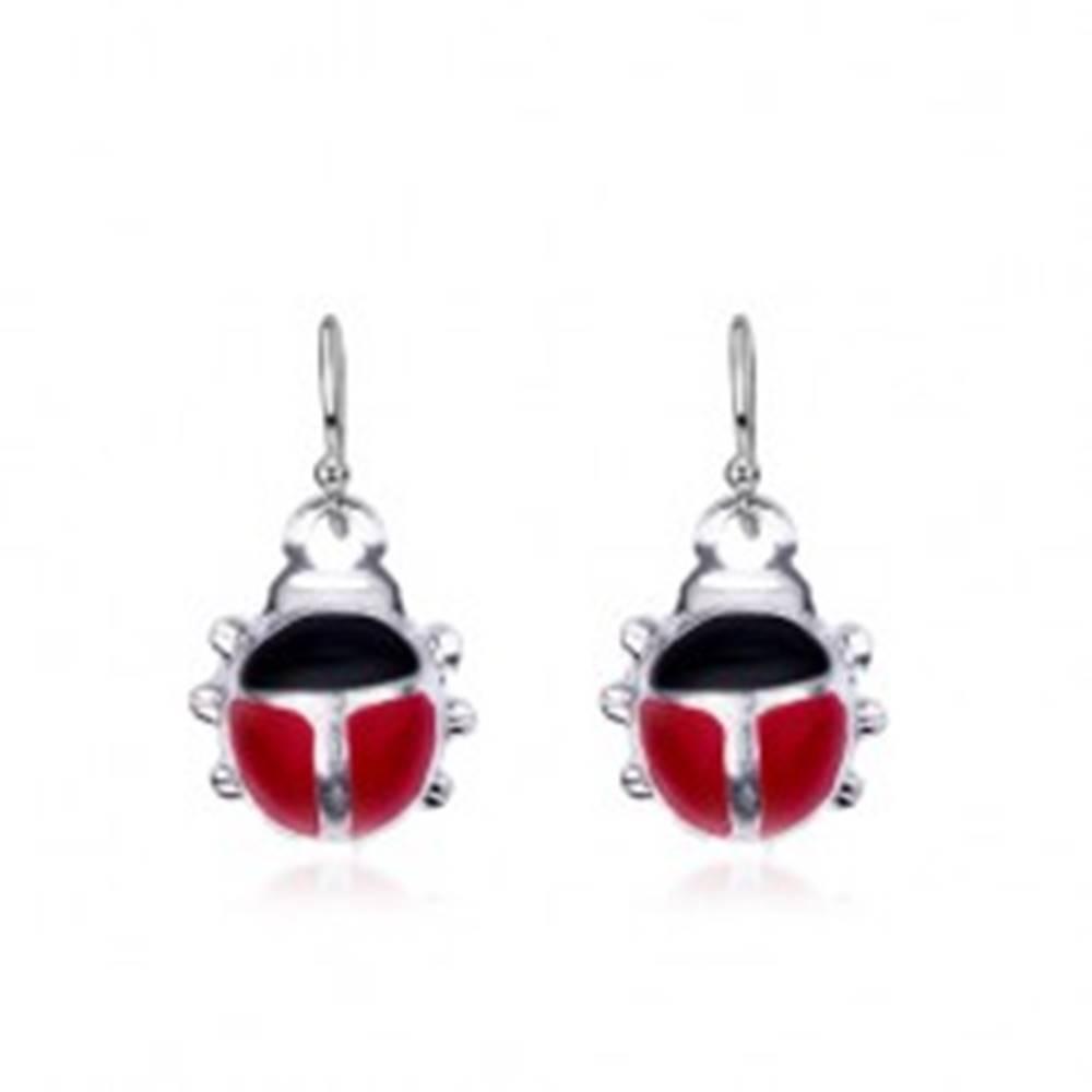 Šperky eshop Duté strieborné náušnice 925 - dvojfarebná lienka na háčikoch