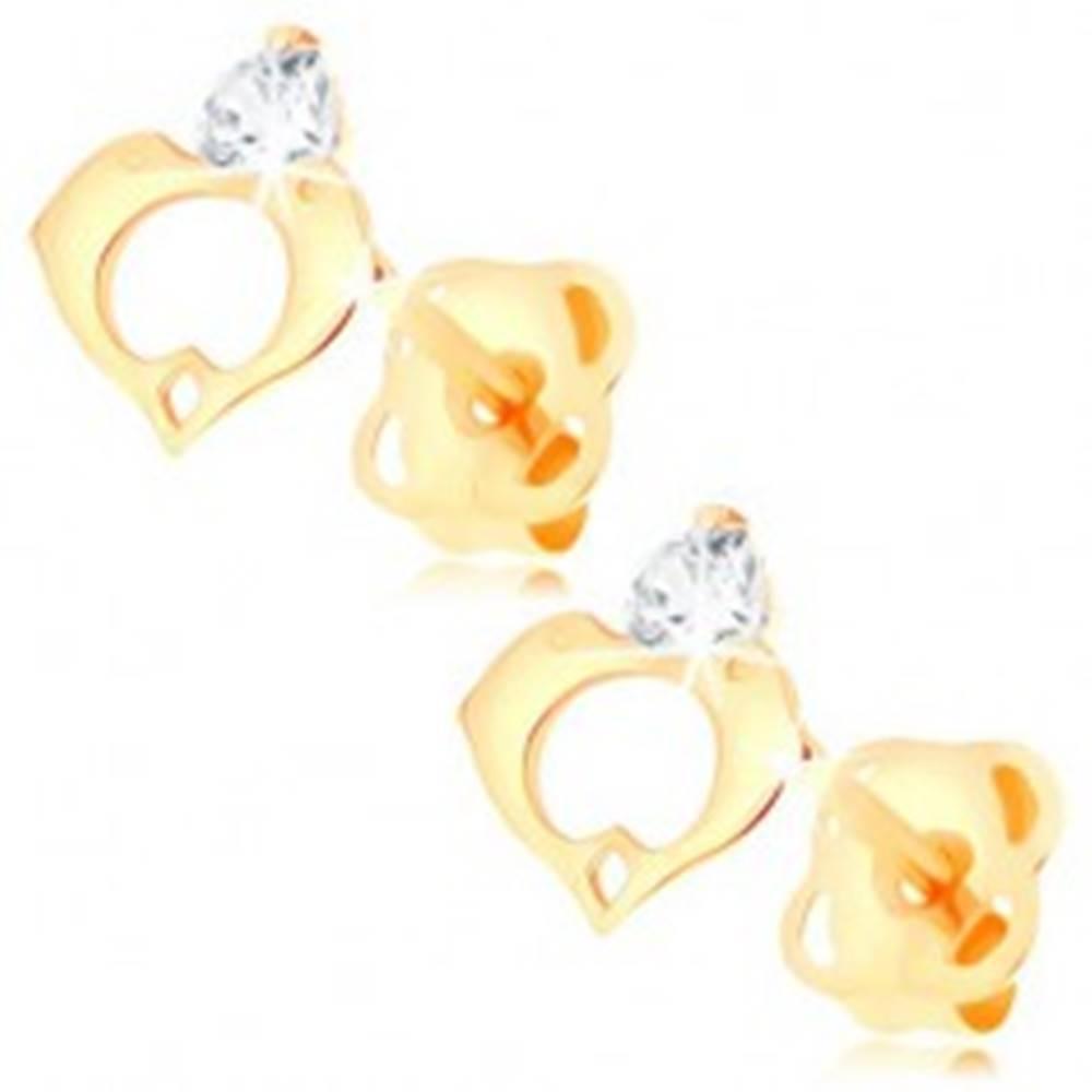 Šperky eshop Náušnice v žltom 14K zlate - číry diamant, kontúra srdca z dvoch delfínov