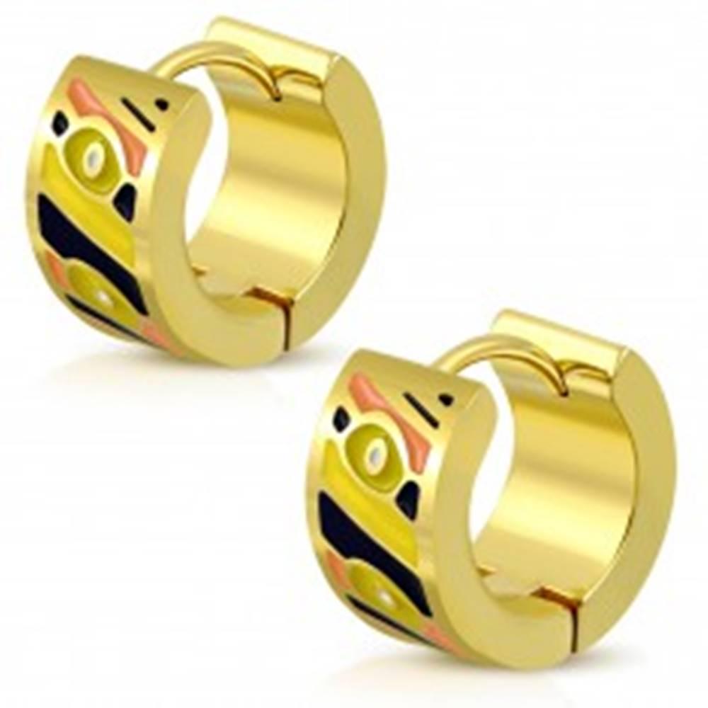 Šperky eshop Okrúhle náušnice z ocele 316L v zlatom odtieni, glazúrované plôšky rôznych farieb