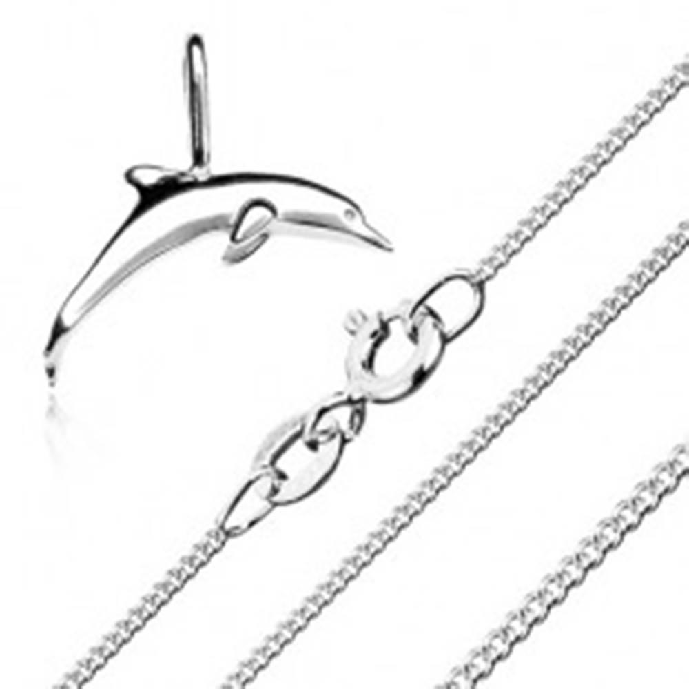 Šperky eshop Náhrdelník - retiazka z drobných očiek a prívesok delfína, striebro 925