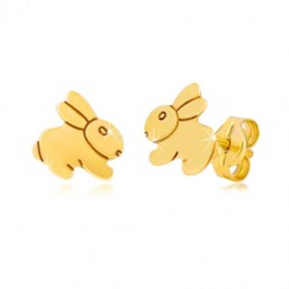 Šperky eshop Náušnice zo žltého 9K zlata - zrkadlovolesklý skákajúci zajačik