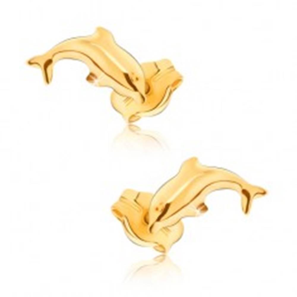 Šperky eshop Náušnice v žltom 9K zlate - lesklé skákajúce delfíny