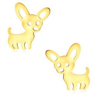 Náušnice v žltom zlate 375 - lesklý psík s veľkými uškami, puzetky
